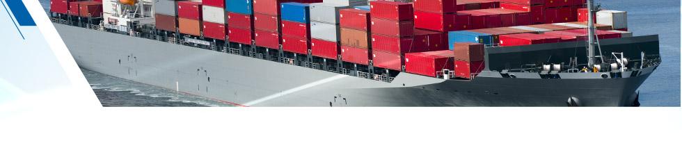 Service export Refrigerant Italia